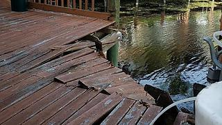 Boca Raton dock collapse sends 13 people into the water - Video