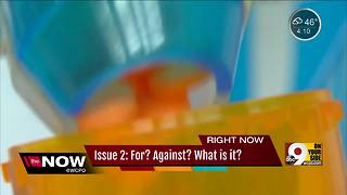 Ohio Issue 2: What swayed voters? - Video