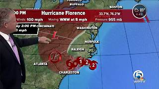 Update on Florence - Video