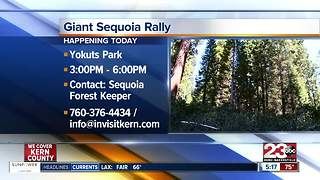 Giant Sequoia National Rally - Video