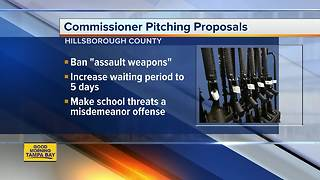 Hillsborough County commissioners to vote on assault-style weapons ban - Video