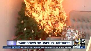 Several valley cities collecting trees for recycling