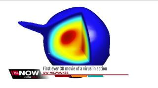 UWM scientists develop new way to study viruses using 3-D movie - Video