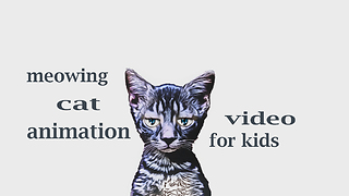 The Animal Sounds - Cat Meowing  - Video