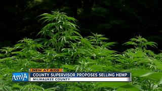 Milwaukee County Supervisor says country should grow hemp