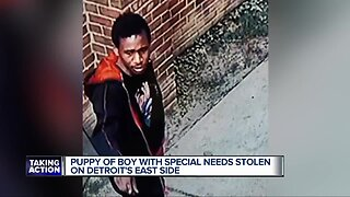 Puppy of boy with special needs stolen on Detroit's east side