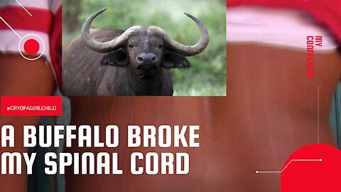 Just after burying my wife,I was hit by a buffalo & left for dead | My confession