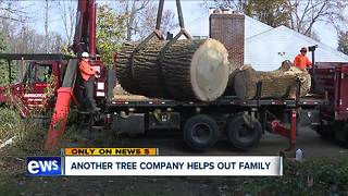 Local company removes tree that fell on Sagamore Hills home, injuring elderly man, for free - Video