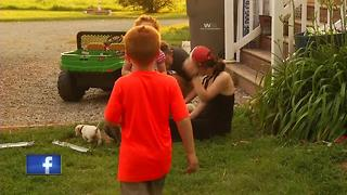 Shawano County family desperately trying to locate three stolen puppies. - Video