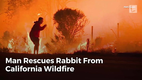 Man Rescues Rabbit From California Wildfire