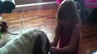 Girl Has A Hilarious Reaction To Her Dog's Selfishness - Video