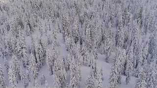 Drone Footage Shows Snow in Lake Tahoe - Video
