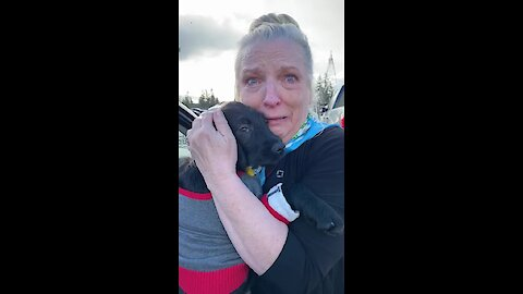 Mom Surprised With Christmas Puppy After Losing 1-Year-Old Labrador