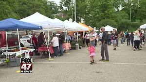Country Mill is back at Farmer's Market - Video