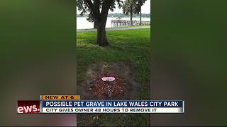 City gives owner 48 hours to remove what appears to be pet buried in public park - Video