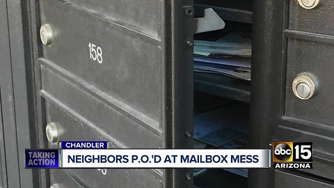 Chandler woman stands guard over neighbors' mail after boxes left open
