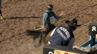 Bull riding competition at the Tucson Rodeo - Video