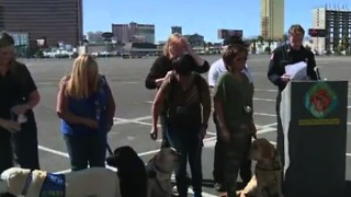 More service dogs coming to Las Vegas sponsored by Tao Group - Video