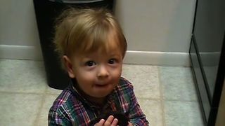 The Baby Brownie Bandit! - Video
