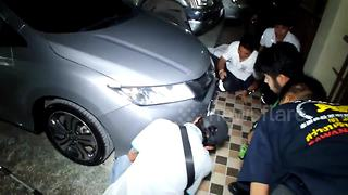 Python pulled out from car bumper in Thailand - Video
