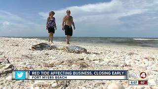 Beach businesses hurting from lingering red tide