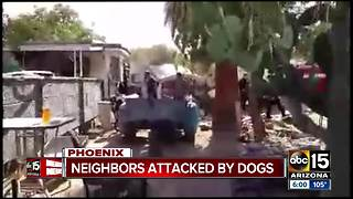 FD: 2 hospitalized after west Phoenix dog attack - Video