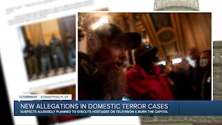 New allegations in domestic terror cases