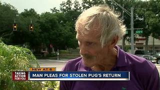 69-year-old man's car stolen with dog still inside at Hillsborough Co. shopping center - Video