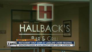 Dirty Dining: Lakeland Regional Airport's on-site restaurant temporarily closes for live roaches - Video