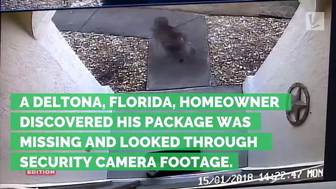 Age 6 Boy Forced to Steal Packages Left at Front Door. And It Wasn't by His Parent