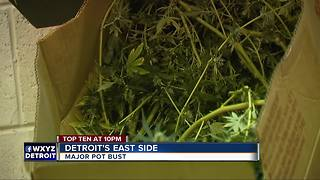 Major pot bust on Detroit's east side - Video