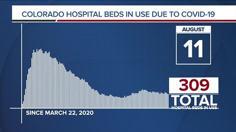 GRAPH: COVID-19 hospital beds in use as of August 11, 2020