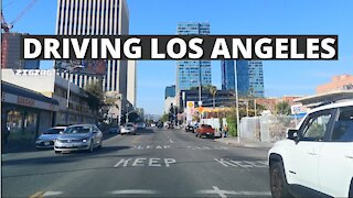 Driving Los Angeles