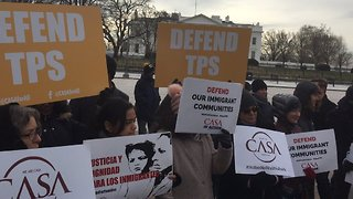 Demonstrators Protest White House Decision to End Temporary Status for Salvadorans - Video
