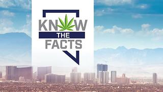 Public consumption among questions as recreational marijuana sales begin in Nevada - Video
