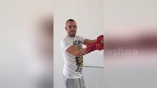 Man releases red common falcon trapped in his house - Video