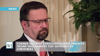 Former WH Aide Sebastian Gorka Predicts Trump Will Remove Top Officials By Christmas - Video