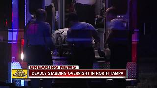 Tampa PD investigating fatal stabbing in North Tampa - Video