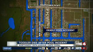 Toddler dies in pool accident - Video