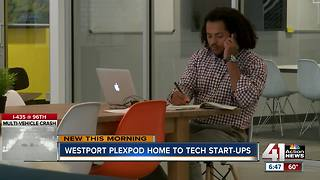 Startups thriving at Westport's Plexpod - Video