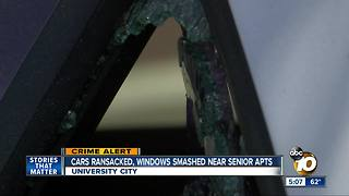 Cars ransacked, windows smashed near senior homes - Video