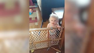 """""""A Baby Girl Argues with Her Mother About Climbing Over A Baby Gate"""""""