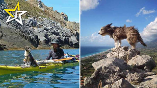 Man Quits Job And Kayaks Up Mediterranean Coast With His Dog - Video