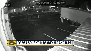Tampa Police looking for driver behind deadly hit-and-run crash involving a skateboarder - Video