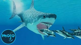 Top 10 Interesting Facts About The Megalodon - Video