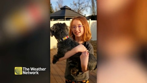 Sophie and her dog Winston give you the forecast from home
