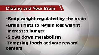 Ask Dr. Nandi: What happens to your brain when you go on a diet - Video