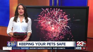Everything you need to know for the 4th of July - Video