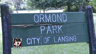 Local group has concerns over park millage funds for Ormond Park