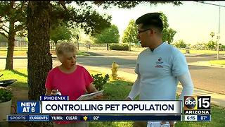 Valley program hitting the streets to control pet population - Video